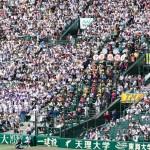 天理高校野球部 甲子園準々決勝 天理高側応援席