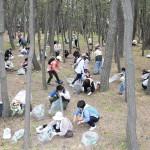 「白砂青松100選」に選ばれた「千本浜公園」(静岡県沼津市)では、静岡教区駿豆支部の教友らがひのきしんを実施。松林や海岸で清掃などに汗を流した(2015年4月29日)
