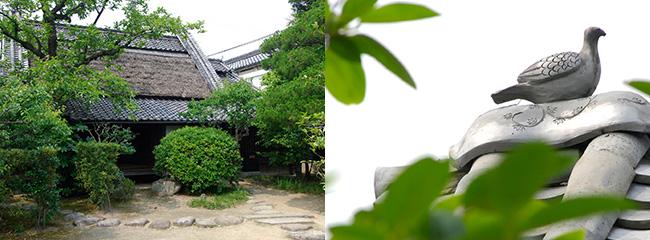 教祖・中山みきの生家である前川家の屋敷と屋根瓦。