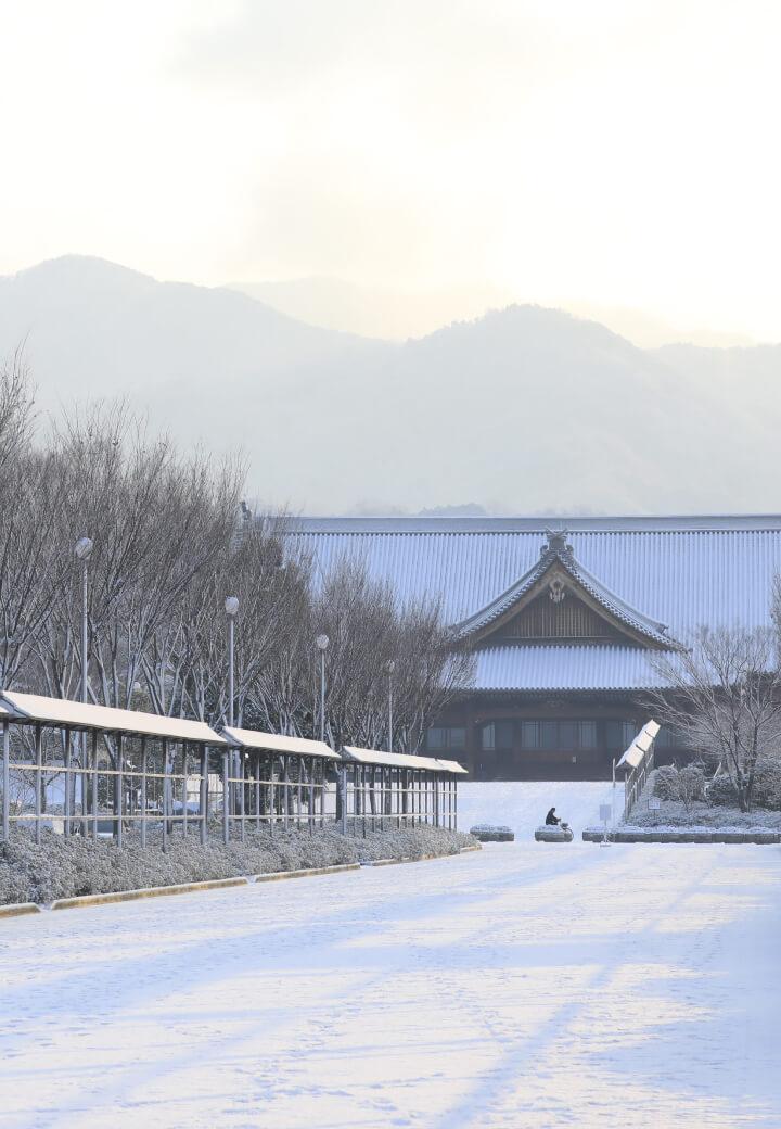 神殿西側・西参道<br>冬枯れの木立と雪景