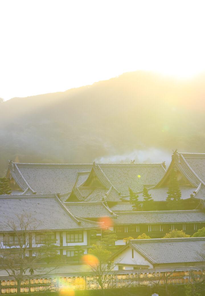 神殿西側から撮影<br>朝日に輝く<ruby><rb>甍</rb><rp></rp><rt>いらか</rt><rp></rp></ruby>