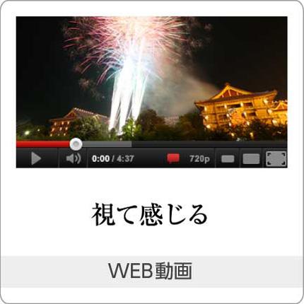 視て感じる「WEB動画」