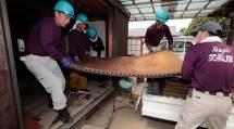 佐賀教区隊は、水没した家財道具や畳を民家から運び出した(5日、佐賀県武雄市で)