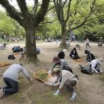 兵庫教区姫路北支部は国宝・姫路城の周辺で実施した(2015年4月29日、兵庫県姫路市の姫山公園で)