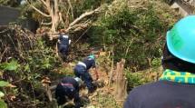 群馬・栃木・新潟の3教区隊から成る第2次隊では、倒木の撤去作業も行った(10月9日、館山市で)